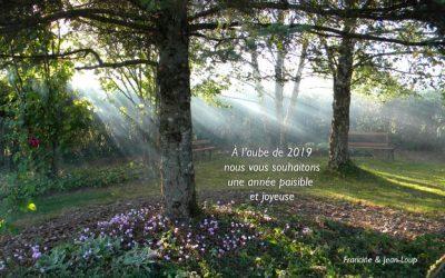 """Les """"Pas tranquilles"""" : les vœux de Francine"""
