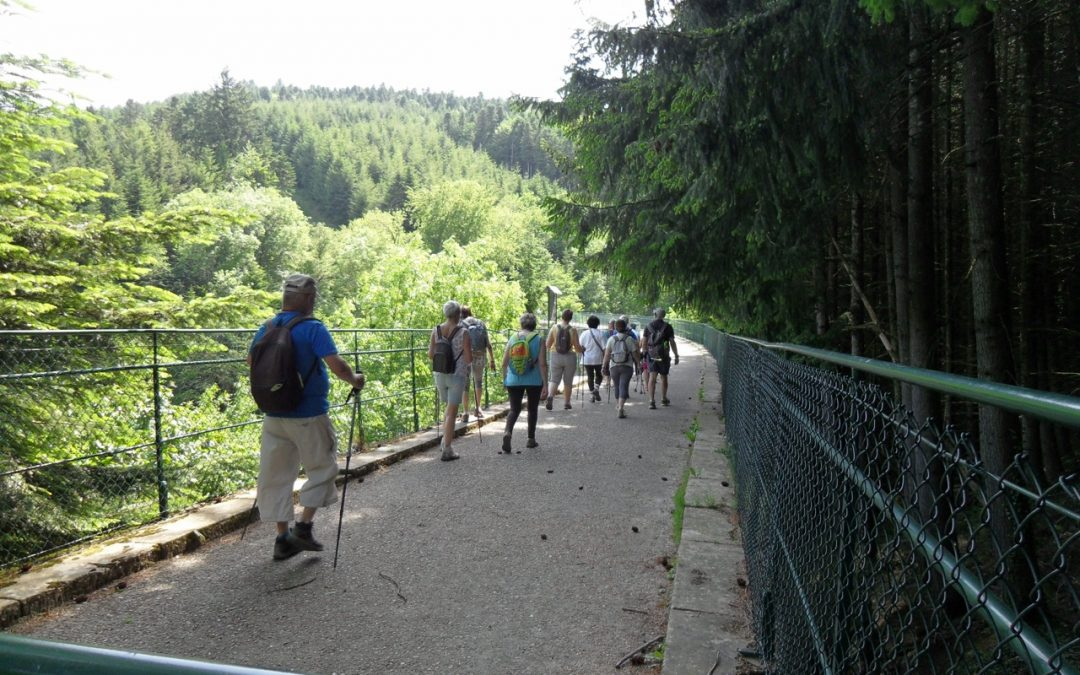 Du Col de Charuge à Monsols le 4.06.19