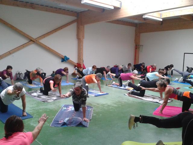 Salle Jean Fricaud - Gym
